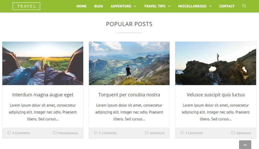 5 Customizable WordPress Themes Like OceanWP